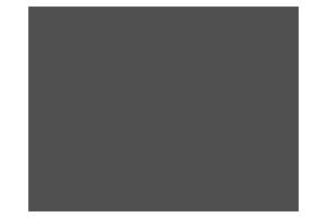 Logo_Sinnbild_1_grau